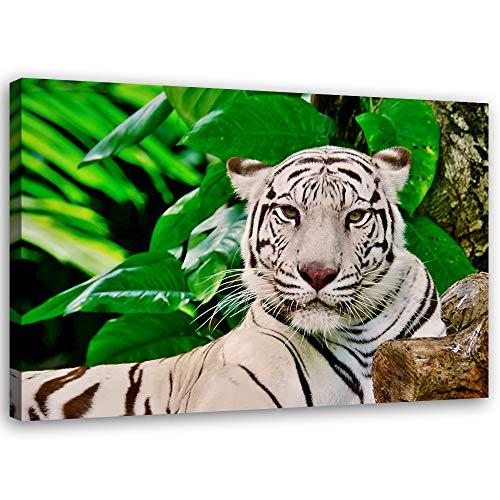 Feeby Cuadros en Lienzo Animal Arte Moderno Tigre Verde 90x60 cm