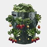 BESISOON Macetas 10 GAL Creciente Bolsa de Fresa Patata Vegetal Establecimiento de la Flor Bolsa de Compost Caja Cubo PE Creciente Bolsa de jardín al Aire Libre (Color : Green, Size : One Size)