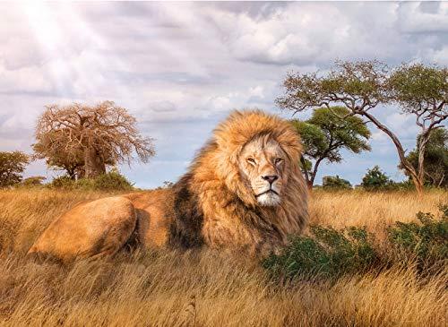 Brandsseller Puzzle – Il re – Leone – 1000 pezzi