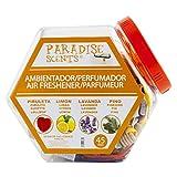 Paradise PER80193 Contenedor Perfumadores en Botella, Set de 48