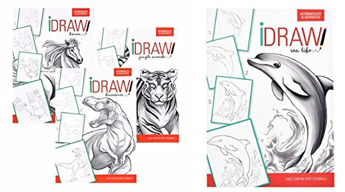 iDraw Learn To Draw Instructional Step-by-Step Tutorial Books, 4-bk Set