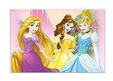 Folat B.V. Procos - 85004 Mantel de plástico de Princesas Disney (Disney Princess Dreaming) 120 x 180 cm, color rosa