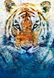 Import Posters Life of PI – Ang Lee – U.S Textless