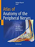 Atlas of Anatomy of the peripheral nerves: The Nerves of the Limbs – Expert Edition