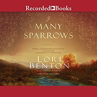 Many Sparrows audiobook cover art