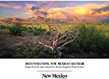 2021 Enchanting New Mexico Calendar: Images from the 19th Annual New Mexico Magazine Photo Contest