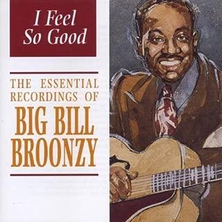I Feel So Good by Big Bill Broonzy