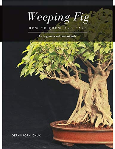 Weeping Fig: How to grow and care (English Edition)