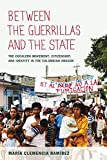 Between the Guerrillas and the State: The Cocalero Movement, Citizenship, and Identity in the Colomb...