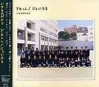 Yell/Joyful by Ikimono Gakari (2009-09-23)