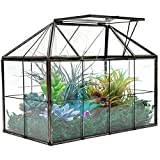 VoiceFly Glass Terrarium Case, House Shape Planter Container, Geometric Succulent Terrarium with Swing Lid Tabletop Planter Box Indoor Greenhouse for Fern Moss Plants Flowers Orchids Foliage Miniature