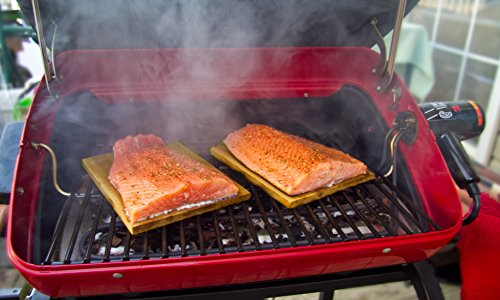 Easy Street Supreme 9329w9 Electric Bbq Grill Review
