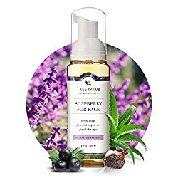 tree to tub low ph soapberry face wash