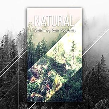 #12 Nature Sounds: Relaxation, Sleep, Meditation and Yoga Music