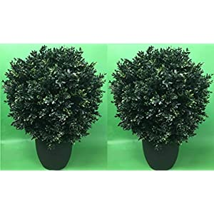 Two 24″ T by 16″ W Outdoor Artificial Boxwood Topiary Ball Bush UV Rated in Weighted Pot.