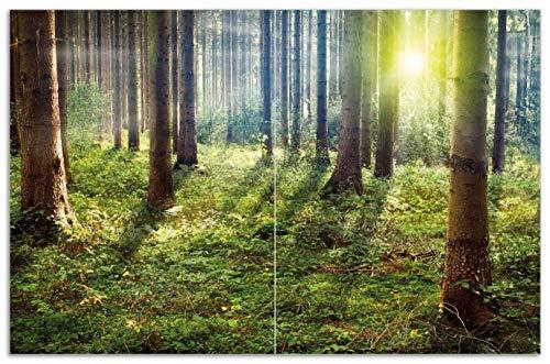 Wallario Herdabdeckplatte/Spritzschutz aus Glas, 2-teilig, 80x52cm, für Ceran- und Induktionsherde, Motiv Sonnenuntergang im Wald zwischen den Bäumen