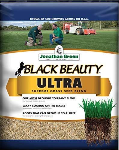 Jonathan Green (#10324) Black Beauty Ultra Grass Seed Mix, 50 lb Bag