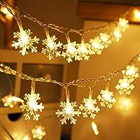 SBG 24.8-ft. Snowflake LED String Lights