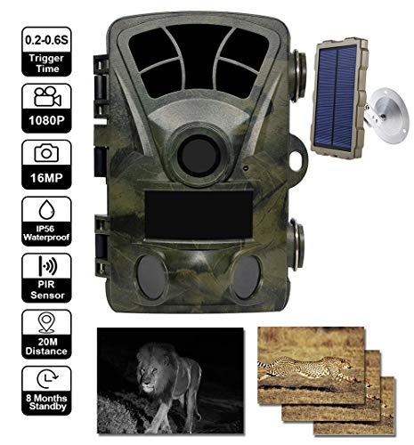 YTLJJ Wildkamera Fotofalle 16MP 1080P mit bewegungsmelder, Jagdkamera Infrarote nachtsicht 65ft/20m, IP56 Wasserdicht Überwachungskamera, 2,4-Zoll-Bildschirm, mit Solarpanel-Set