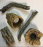 catappa-leaves Set de decoración natural para acuarios y terrarios, 5 unidades, madera de cactus