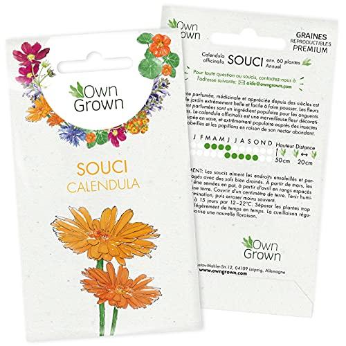 Graines de fleurs comestibles Souci: Kit graine de fleurs sauvages pour environ 100 plantes - Souci pour potager, jardin et balcon à planter et à faire pousser - Qualité supérieure OwnGrown