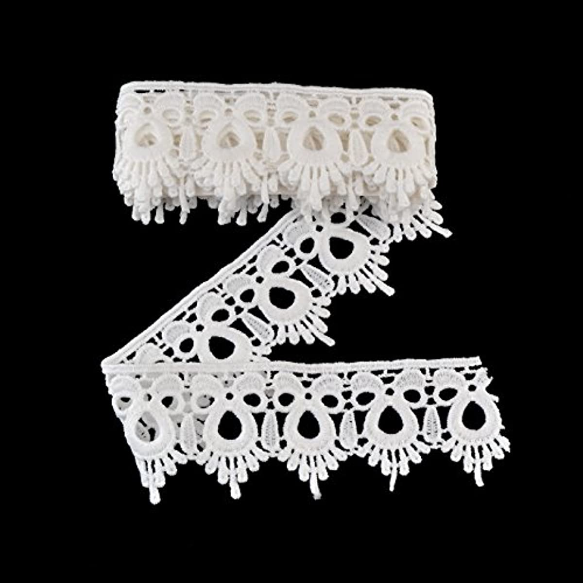 eZthings Venise Edging Lace Trim From Eyelet Fabric For DIY Craft Venice Trims (3 Yard, Trim)