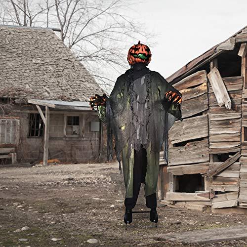 Haunted Hill Farm Life-Size Animatronic Pumpkin Man, Indoor/Outdoor, Light-up Head, Talking, HHPUMP-6FLSA Halloween Decoration, Color 5