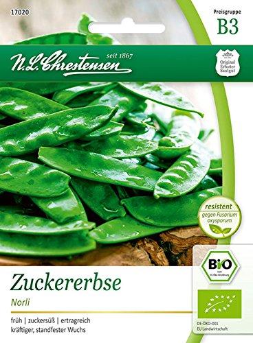Bio Zuckererbse 'Norli' Saatgut Samen (früh, zuckersüß, ertragreich)