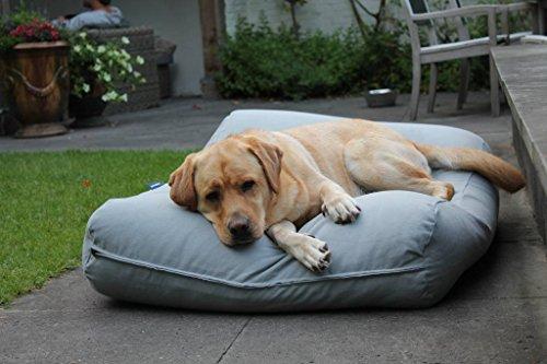 Dog's Companion® Hundebett Hellgrau Large