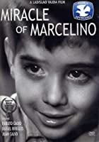 Miracle of Marcelino [DVD]