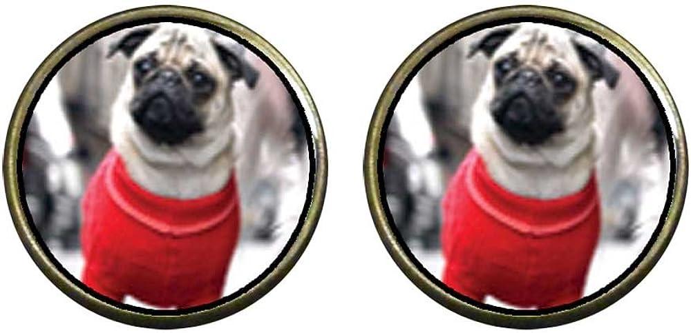 GiftJewelryShop Bronze Retro Style Dressed Up Pug Photo Clip On Earrings 14mm Diameter