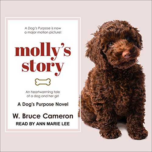 Molly's Story audiobook cover art