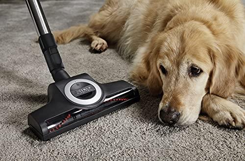 Miele Complete C3 Cat  Dog PowerLine Bild 4*