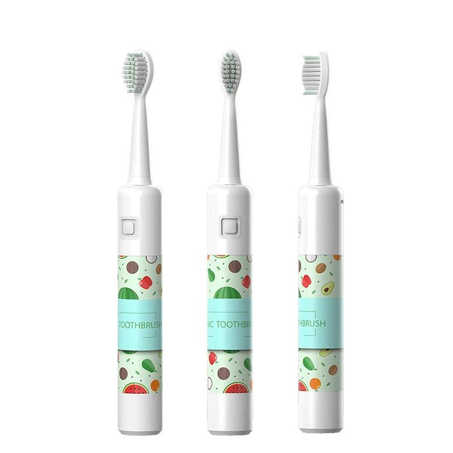 信条メロディアス乏しいBOBIDYEE 自動歯ブラシ音波怠惰な電動歯ブラシUSB充電電動歯ブラシ充電 (色 : White)