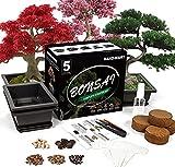 Bonsai Tree Seed Starter Kit - 5 Bonsai Seeds with Complete Growing Kit - Bonsai Pot, Soil, Pruner, Watering, Markers & Guide - Garden Gift for Women&Men