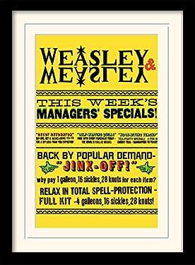 Harry Potter Weasley Specials Memorabilia, 30 x 40 cm