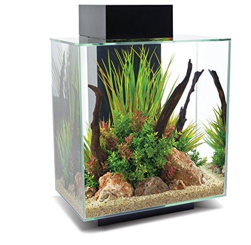 Fluval 15038Edge 2.046l Aquarium Set, Noir