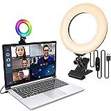 LAVKOW 16cm/6.3'' Videokonferenz Beleuchtungsset mit Clip für Mobiltelefone Dimmbares LED...