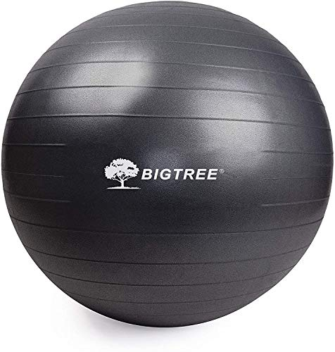BIG.TREE Pilates Exercise Ball Anti-Burst Fitness Ball, Yoga Balance Ball for Workout, Birthing, Stability Gym Office Training and Physical Therapy(55cm-75cm) (Black, 65)