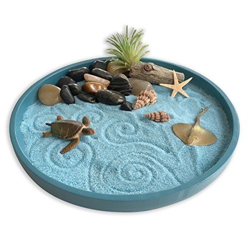 Mini Zen Garden Sea Life, A Day at The Ocean, Desktop Sandbox for Meditation and Relaxation