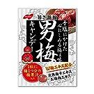 ノーベル 男梅 キャンディー 80g×4袋