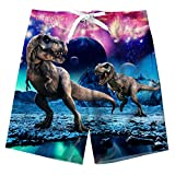 Funnycokid Kids Swin Trunks Dinosaur Board Shorts Quick Dry Boys Girls Summer Beach Shorts 8T