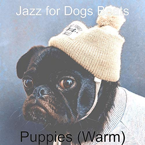Jazz for Dogs Beats