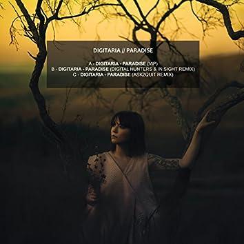 Paradise Remixes