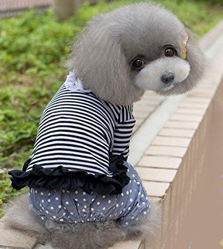 smalllee _ LUCKY _ ranger Fine Mince Pour acier rapide à rayures pour homme pour petit chien chat chiot vêtements pour chien Costume XS-XXL
