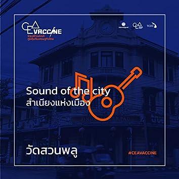 วัดสวนพลู (Sound of the city)