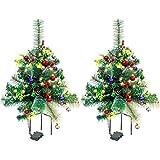 Top 10 Christmas Tree Outdoors