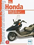 Honda Helix CN 250 / Foresight FES 250 (Reparaturanleitungen) - Thomas Jung