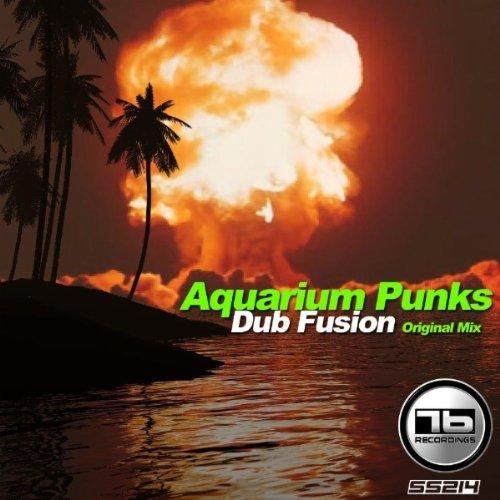 Dub Fusion (Original Mix)