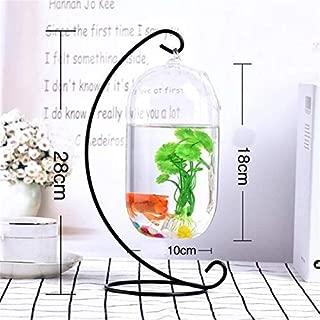HO THONG NGUYEN1 Fish Tank Accessories Kit - Desktop Hanging Glass Fish Tank Simple Mini Grass Fun Fish Tank Clear Fish Cylinder Bowl Iron Stand Holder Aquarium Accessories